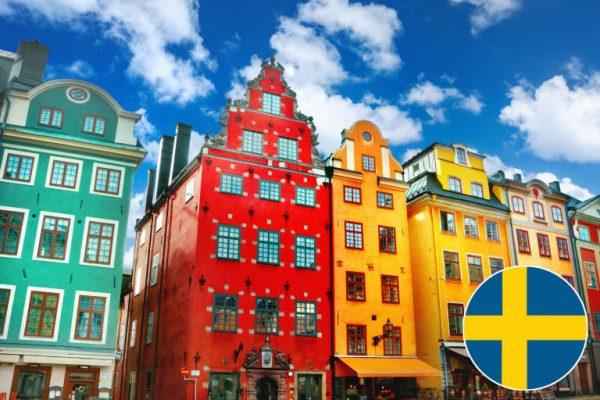 Individuālie zviedru valodas kursi