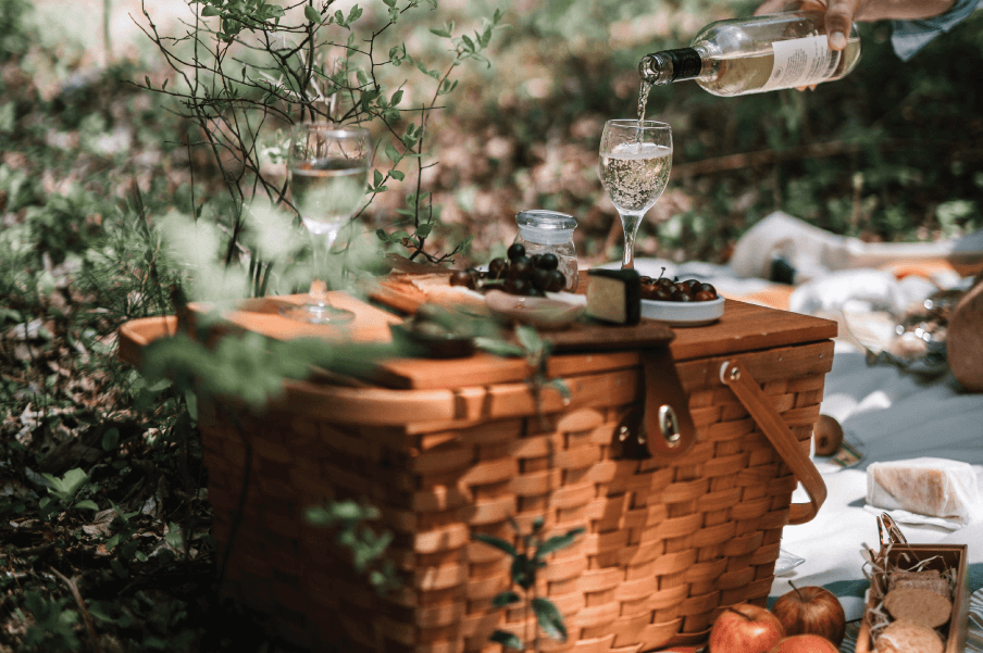 Skrivanek Baltic angļu valodas vārdnica - pikniks