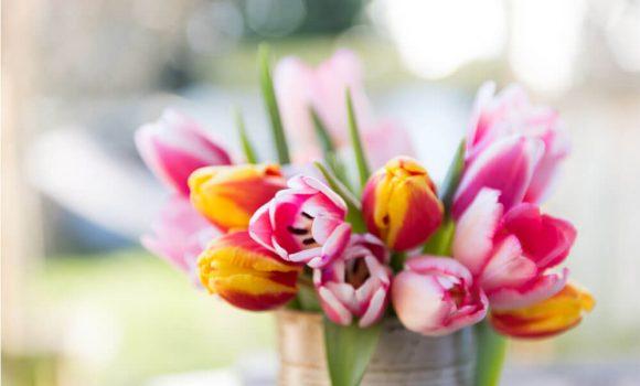 10 vārdi angļu valodā saistīti ar pavasari