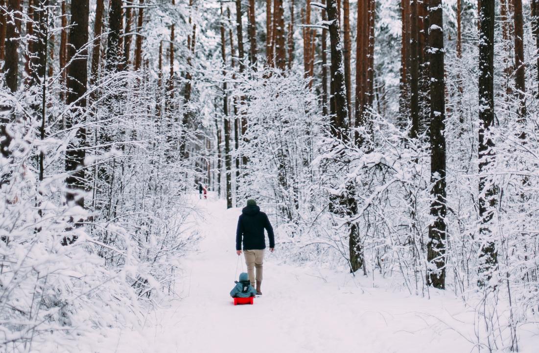 Skrivanek Baltic angļu valodas vārdnica - ziema